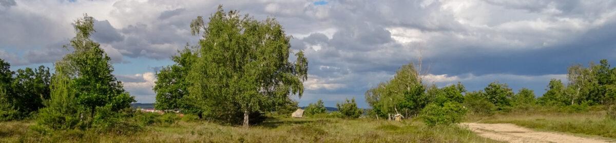 Doma v Podyjí