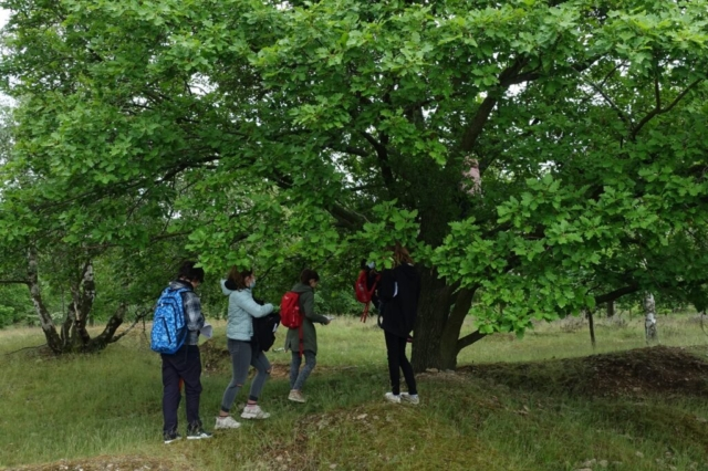 program pro školy aneb čeština v přírodě. Kraví hora v NP Podyjí