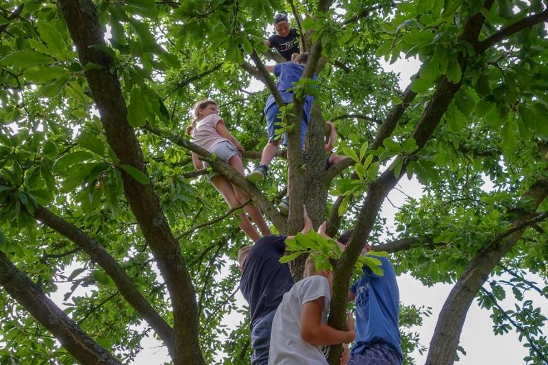 Poučně-zážitkový výlet do NP Podyjí - celá třída na stromě