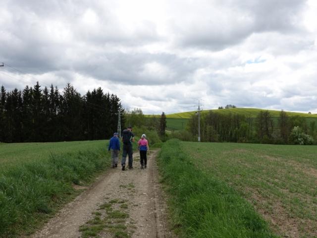 Třešť, výchozí místo k prameni Moravské Dyje